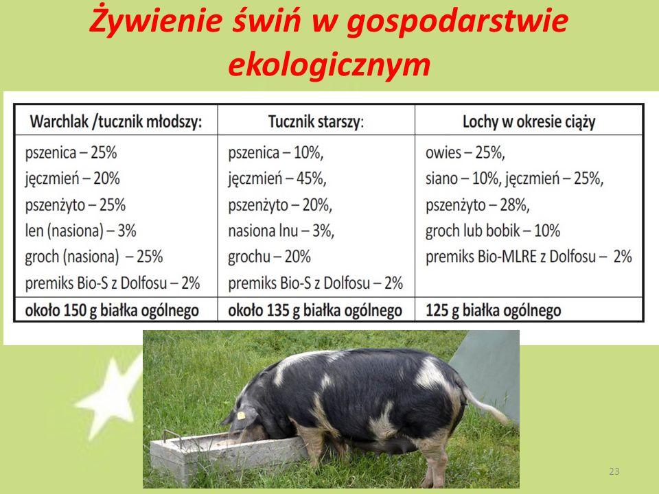 Żywienie świń w gospodarstwie ekologicznym 23