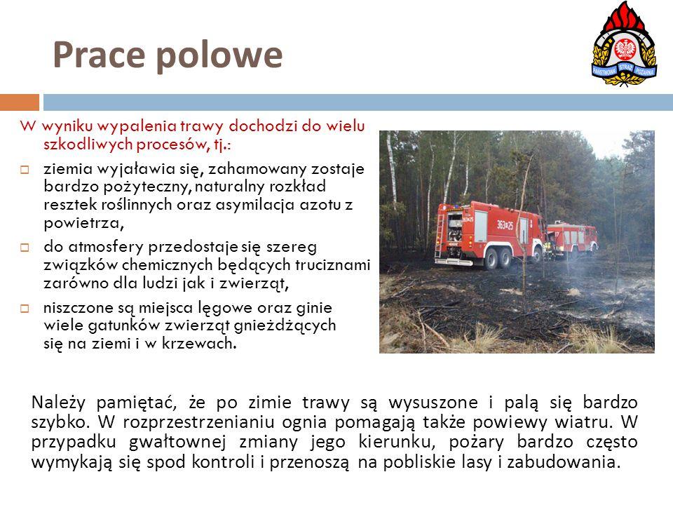 W wyniku wypalenia trawy dochodzi do wielu szkodliwych procesów, tj.:  ziemia wyjaławia się, zahamowany zostaje bardzo pożyteczny, naturalny rozkład
