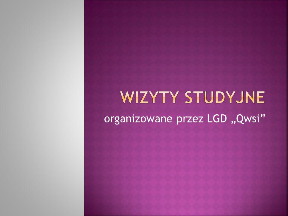 """organizowane przez LGD """"Qwsi"""""""