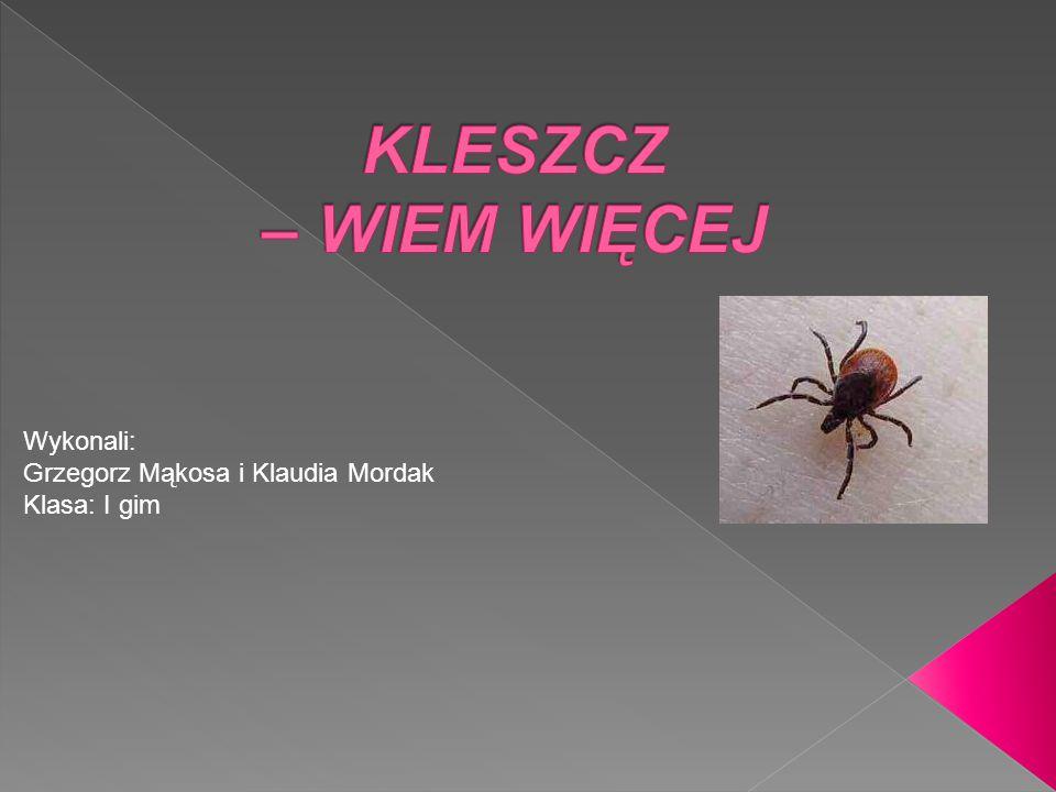 Wykonali: Grzegorz Mąkosa i Klaudia Mordak Klasa: I gim