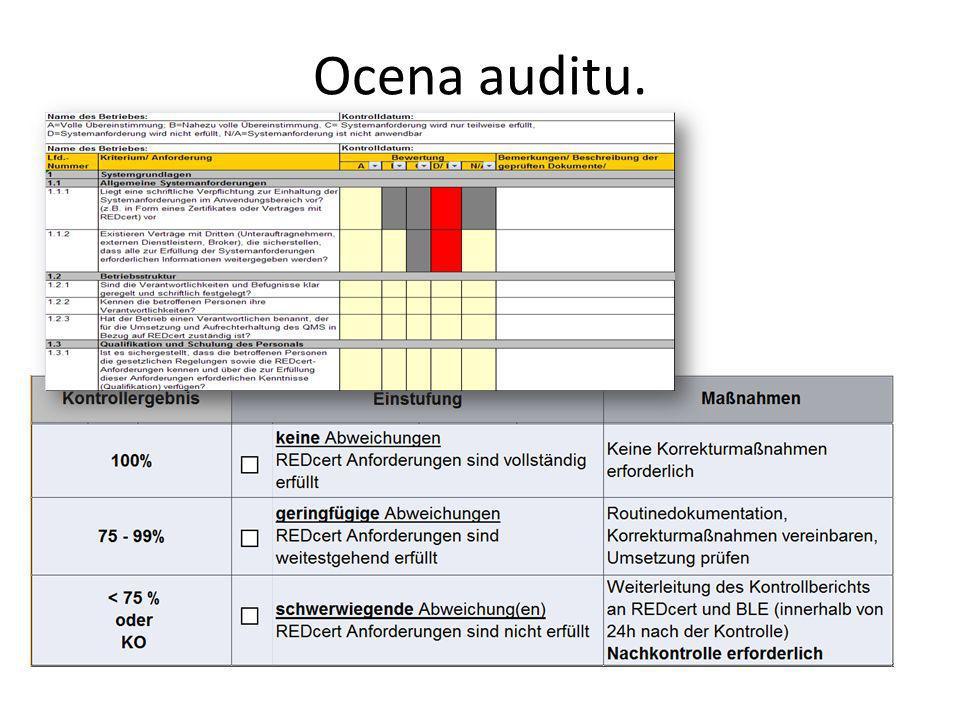 Ocena auditu.