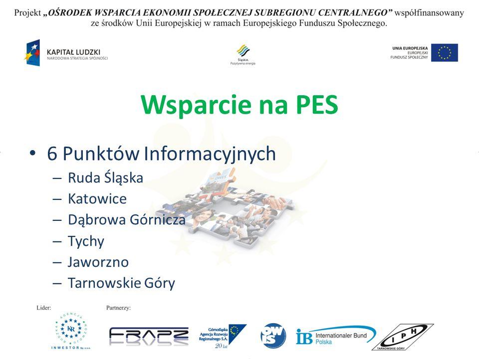 Wsparcie na PES 6 Punktów Informacyjnych – Ruda Śląska – Katowice – Dąbrowa Górnicza – Tychy – Jaworzno – Tarnowskie Góry