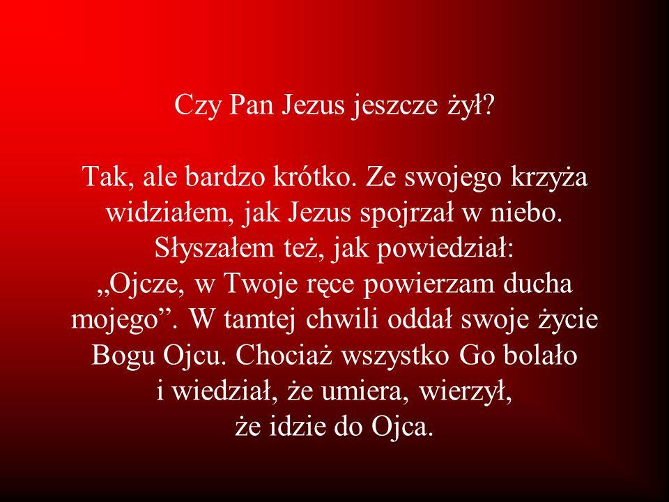 """Czy Pan Jezus jeszcze żył? Tak, ale bardzo krótko. Ze swojego krzyża widziałem, jak Jezus spojrzał w niebo. Słyszałem też, jak powiedział: """"Ojcze, w T"""