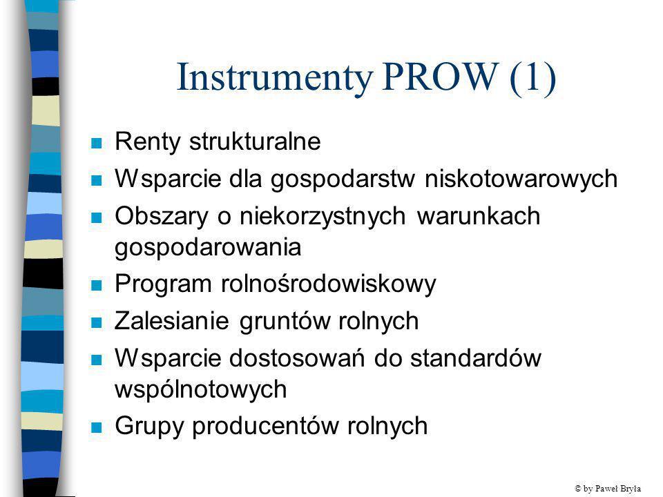 Instrumenty PROW (1) n Renty strukturalne n Wsparcie dla gospodarstw niskotowarowych n Obszary o niekorzystnych warunkach gospodarowania n Program rol