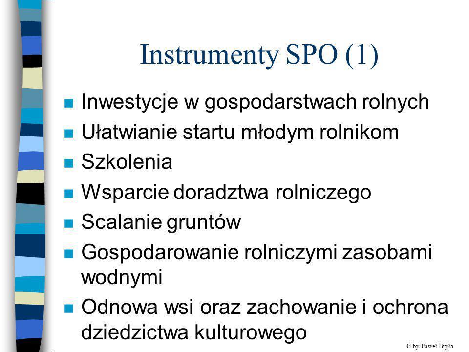 Instrumenty SPO (1) n Inwestycje w gospodarstwach rolnych n Ułatwianie startu młodym rolnikom n Szkolenia n Wsparcie doradztwa rolniczego n Scalanie g