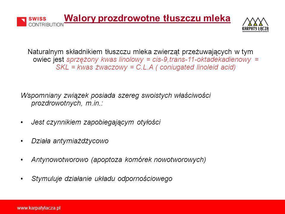 www.karpatylacza.pl Walory prozdrowotne tłuszczu mleka Naturalnym składnikiem tłuszczu mleka zwierząt przeżuwających w tym owiec jest sprzężony kwas linolowy = cis-9,trans-11-oktadekadienowy = SKL = kwas żwaczowy = C.L.A ( coniugated linoleid acid) Wspomniany związek posiada szereg swoistych właściwości prozdrowotnych, m.in.: Jest czynnikiem zapobiegającym otyłości Działa antymiażdżycowo Antynowotworowo (apoptoza komórek nowotworowych) Stymuluje działanie układu odpornościowego