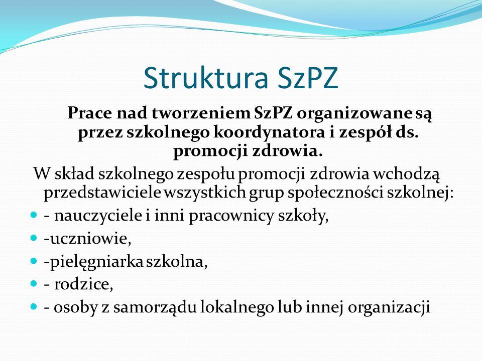 Struktura SzPZ Prace nad tworzeniem SzPZ organizowane są przez szkolnego koordynatora i zespół ds.