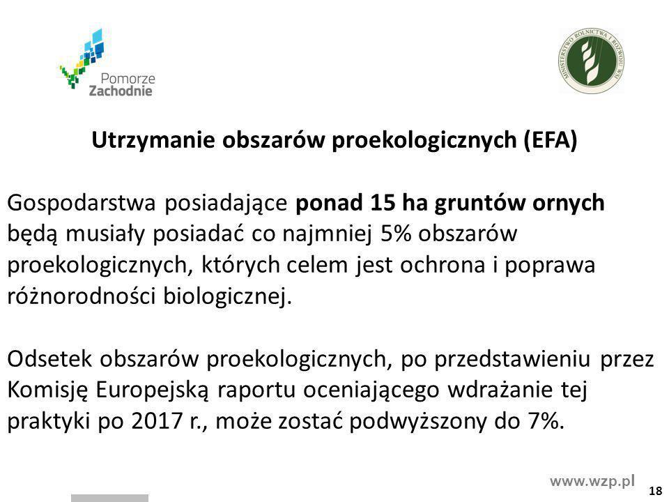 www.wzp.p l Utrzymanie obszarów proekologicznych (EFA) Gospodarstwa posiadające ponad 15 ha gruntów ornych będą musiały posiadać co najmniej 5% obszar