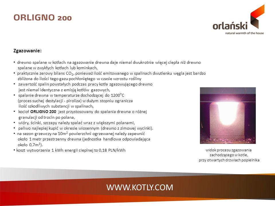 WWW.KOTLY.COM widok procesu zgazowania zachodzącego w kotle, przy otwartych drzwiach popielnika Zgazowanie: drewno spalane w kotłach na zgazowanie dre
