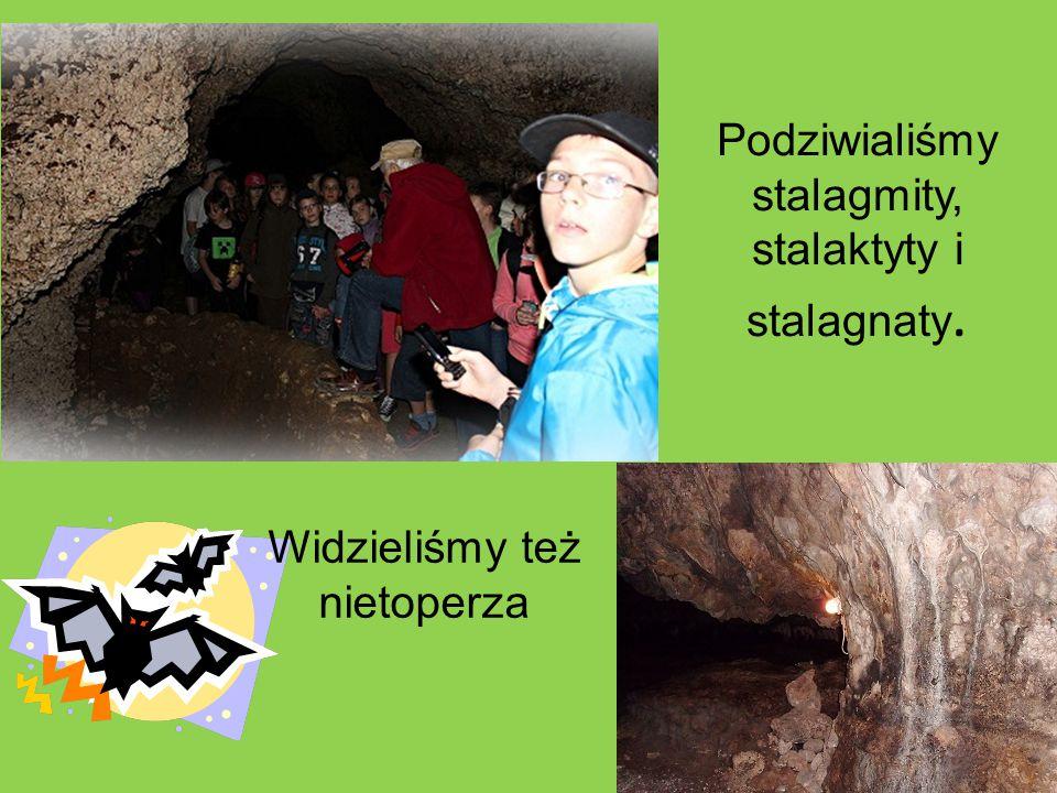 Podziwialiśmy stalagmity, stalaktyty i stalagnaty. Widzieliśmy też nietoperza