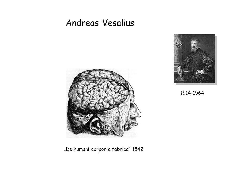 "Andreas Vesalius 1514-1564 ""De humani corporis fabrica"" 1542"