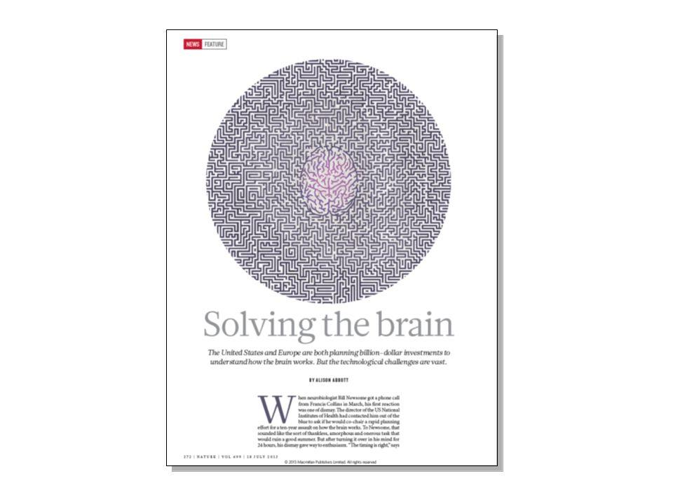 Studia II stopnia kierunku neurobiologia UJ zostały uruchomione w 2011 r.