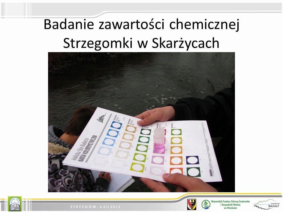 Badanie zawartości chemicznej Strzegomki w Skarżycach
