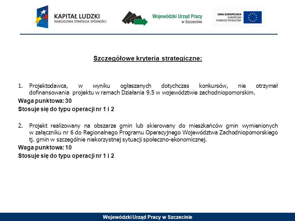 Wojewódzki Urząd Pracy w Szczecinie Szczegółowe kryteria strategiczne: 1.Projektodawca, w wyniku ogłaszanych dotychczas konkursów, nie otrzymał dofina