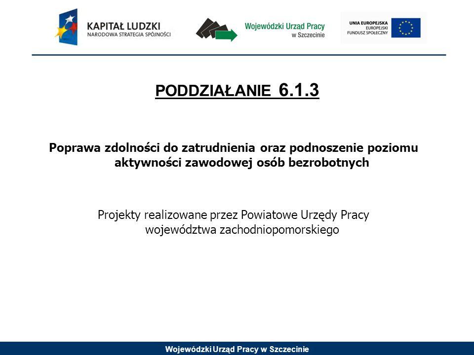 Wojewódzki Urząd Pracy w Szczecinie KRYTERIA DOSTĘPU 1.Grupę docelową w projekcie, w co najmniej 50% stanowią osoby w wieku 15-30 lat, dla których wskaźnik efektywności zatrudnienia na zakończenie realizacji projektu wynosi co najmniej 40 %.