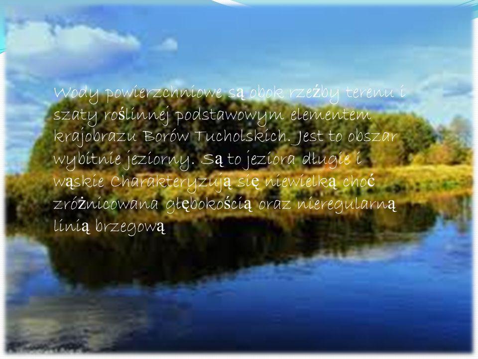 Wody Wody powierzchniowe s ą obok rze ź by terenu i szaty ro ś linnej podstawowym elementem krajobrazu Borów Tucholskich. Jest to obszar wybitnie jezi