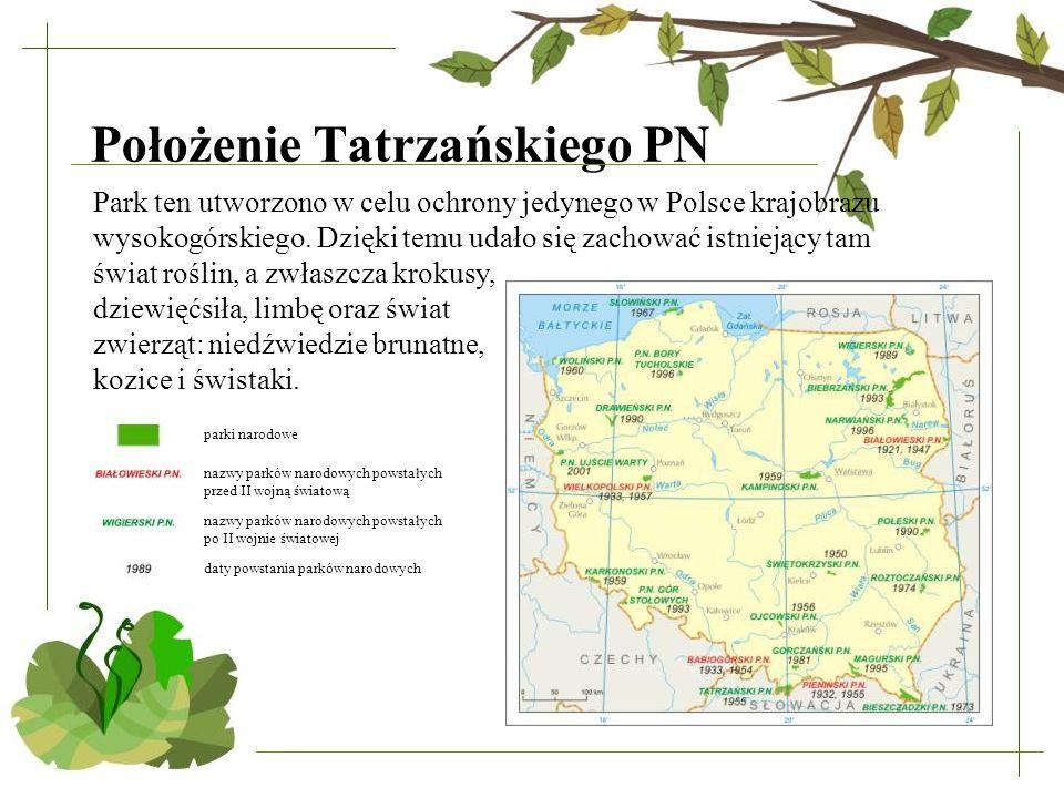 Położenie Tatrzańskiego PN Park ten utworzono w celu ochrony jedynego w Polsce krajobrazu wysokogórskiego. Dzięki temu udało się zachować istniejący t