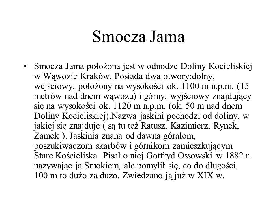 Smocza Jama Smocza Jama położona jest w odnodze Doliny Kocieliskiej w Wąwozie Kraków. Posiada dwa otwory:dolny, wejściowy, położony na wysokości ok. 1