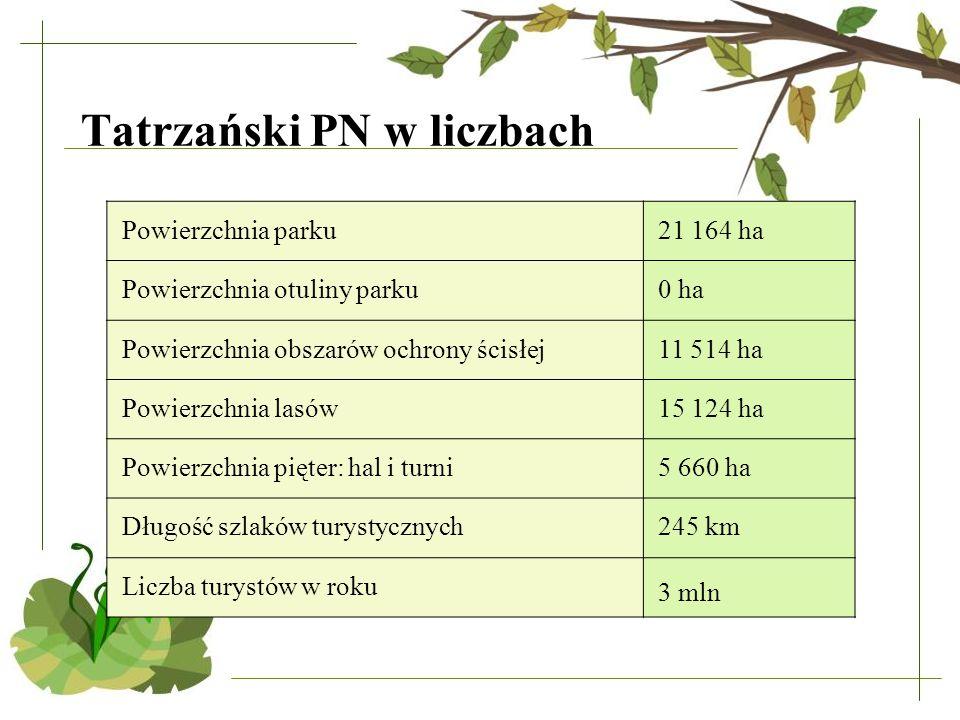 Tatrzański PN w liczbach Powierzchnia parku21 164 ha Powierzchnia otuliny parku0 ha Powierzchnia obszarów ochrony ścisłej11 514 ha Powierzchnia lasów1