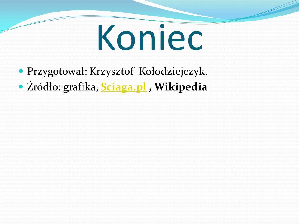 Koniec Przygotował: Krzysztof Kołodziejczyk. Źródło: grafika, Sciaga.pl, WikipediaSciaga.pl