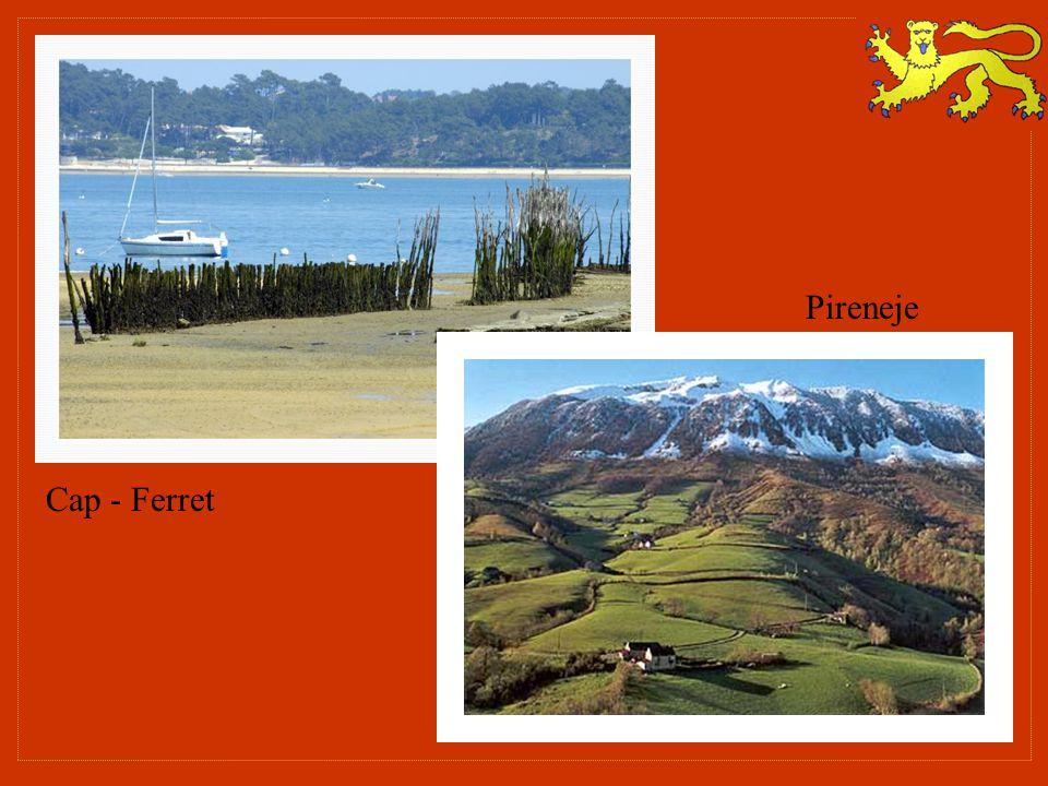 Cap - Ferret Pireneje