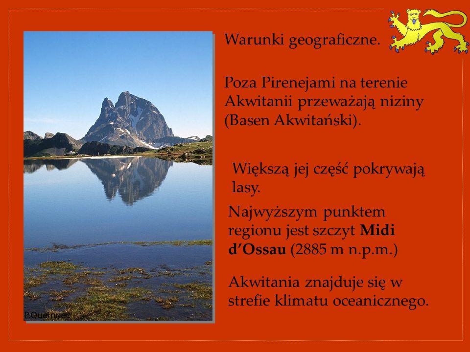 Warunki geograficzne. Poza Pirenejami na terenie Akwitanii przeważają niziny (Basen Akwitański). Najwyższym punktem regionu jest szczyt Midi d'Ossau (