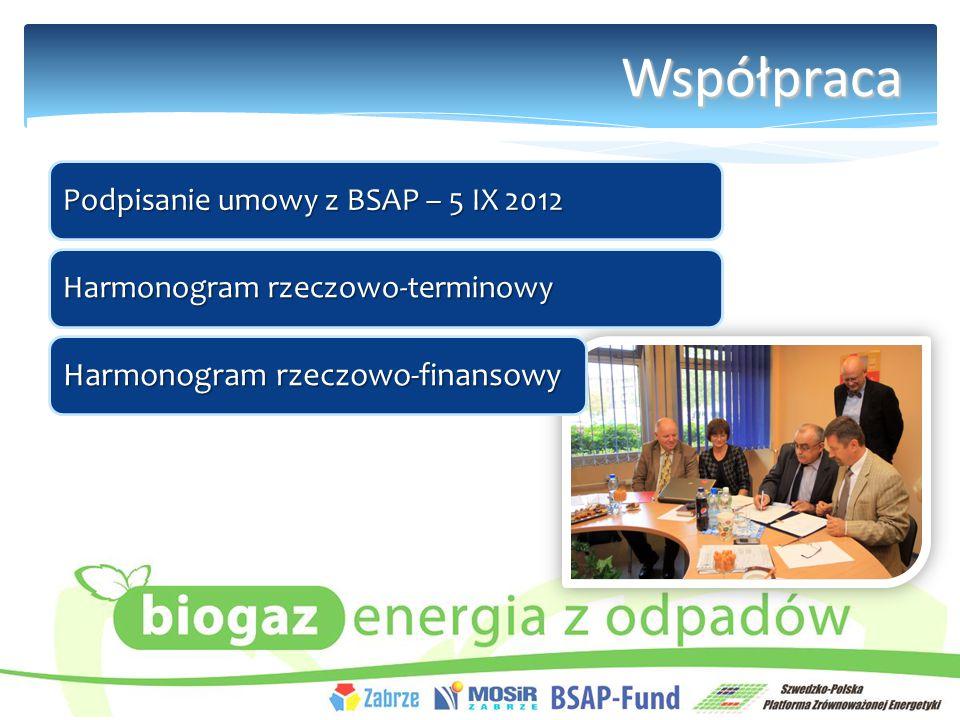 Współpraca Podpisanie umowy z BSAP – 5 IX 2012 Harmonogram rzeczowo-terminowy Harmonogram rzeczowo-finansowy