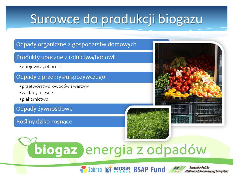 Surowce do produkcji biogazu Odpady organiczne z gospodarstw domowychProdukty uboczne z rolnictwa/hodowli gnojowica, obornik Odpady z przemysłu spożywczego przetwórstwo owoców i warzyw zakłady mięsne piekarnictwo Odpady żywnościoweRośliny dziko rosnące