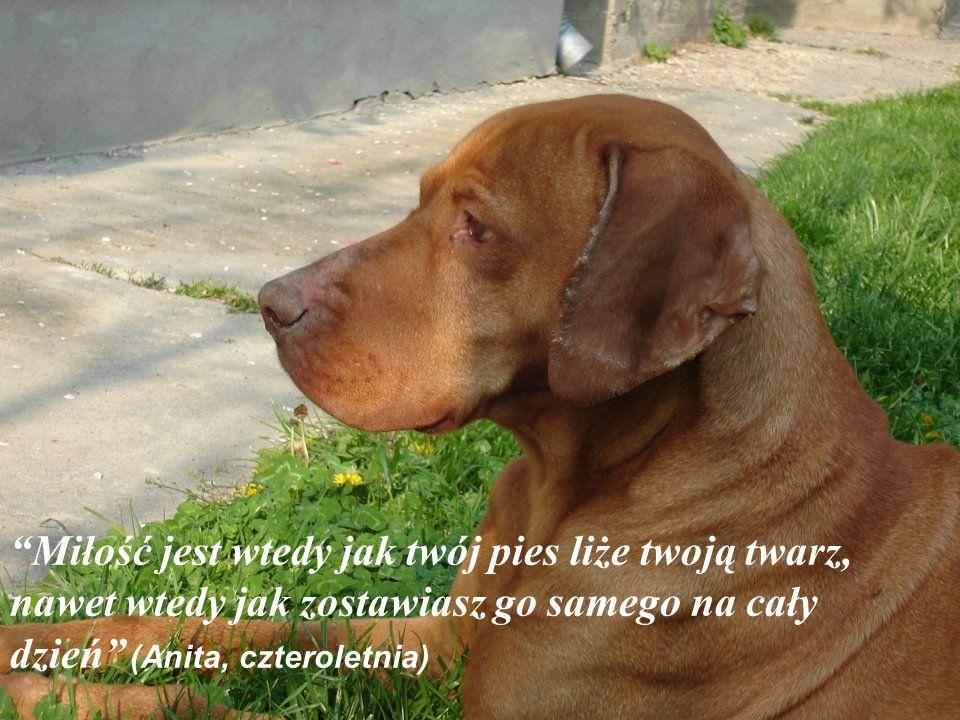 """""""Pies uważa człowieka za swojego boga, choć byłby też doskonałym bezbożnikiem"""" (Paul Valery)"""