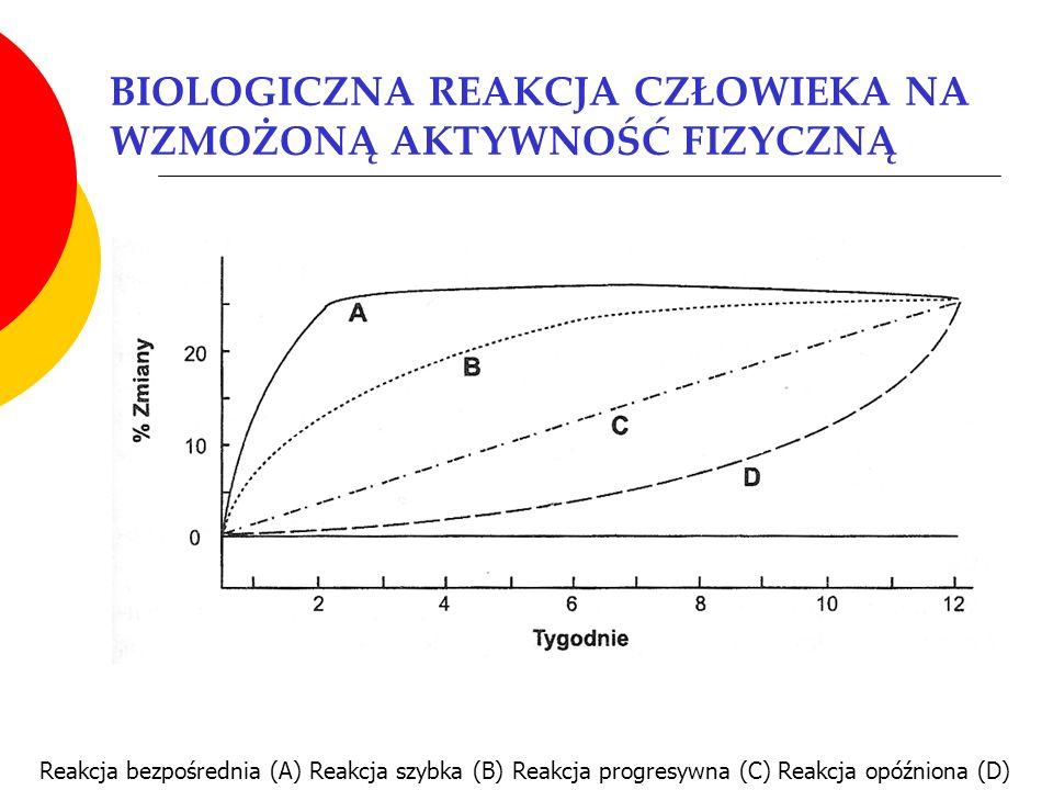 BIOLOGICZNA REAKCJA CZŁOWIEKA NA WZMOŻONĄ AKTYWNOŚĆ FIZYCZNĄ Reakcja bezpośrednia (A) Reakcja szybka (B) Reakcja progresywna (C) Reakcja opóźniona (D)