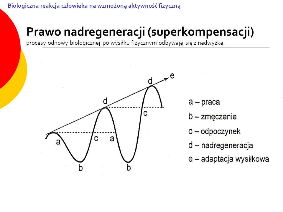 Prawo nadregeneracji (superkompensacji) procesy odnowy biologicznej po wysiłku fizycznym odbywają się z nadwyżką. Biologiczna reakcja człowieka na wzm