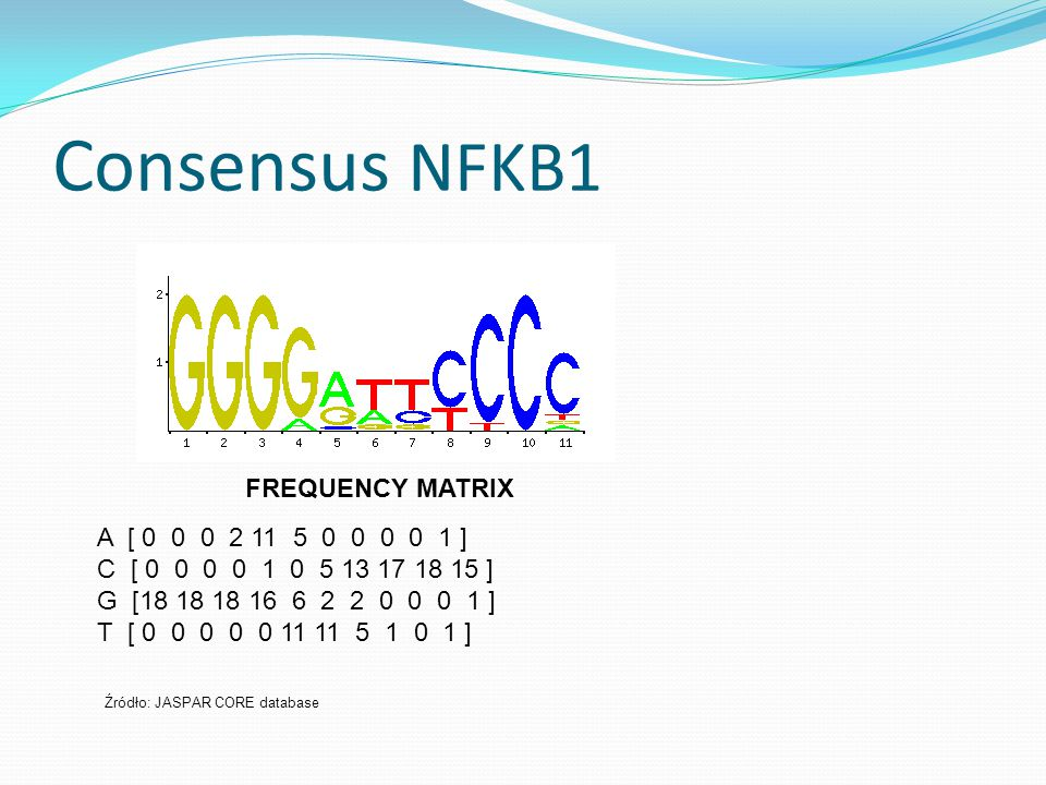 Consensus NFKB1 A [ 0 0 0 2 11 5 0 0 0 0 1 ] C [ 0 0 0 0 1 0 5 13 17 18 15 ] G [18 18 18 16 6 2 2 0 0 0 1 ] T [ 0 0 0 0 0 11 11 5 1 0 1 ] Źródło: JASPAR CORE database FREQUENCY MATRIX