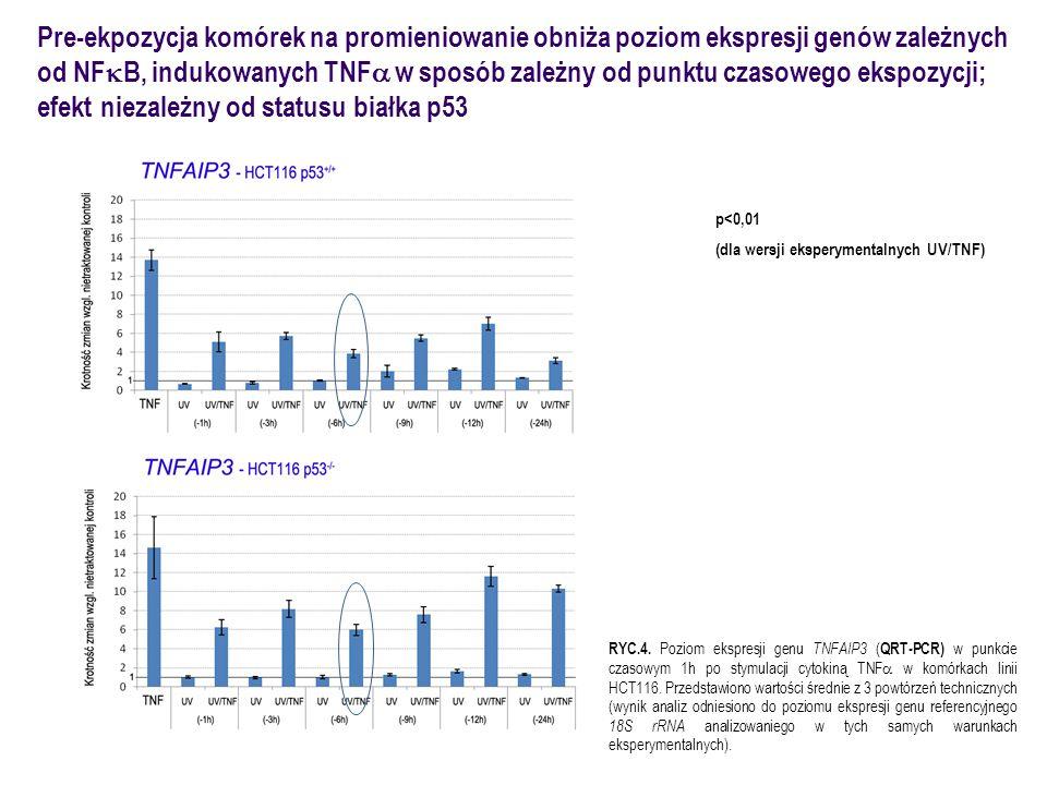 Pre-ekpozycja komórek na promieniowanie obniża poziom ekspresji genów zależnych od NF  B, indukowanych TNF  w sposób zależny od punktu czasowego eks