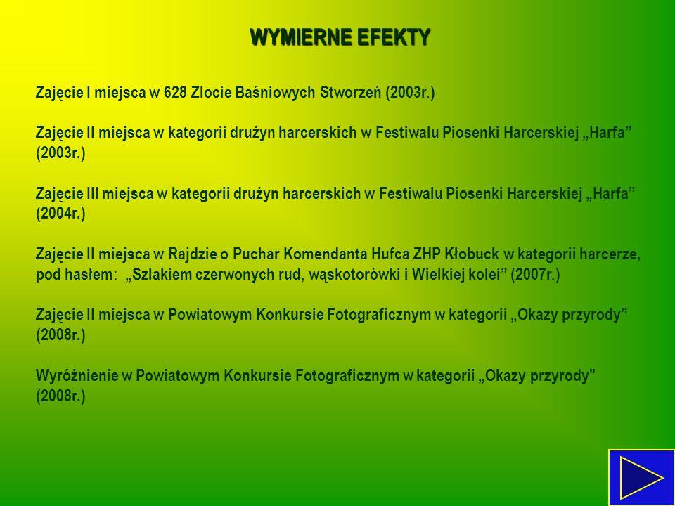 WYMIERNE EFEKTY Zajęcie I miejsca w 628 Zlocie Baśniowych Stworzeń (2003r.) Zajęcie II miejsca w kategorii drużyn harcerskich w Festiwalu Piosenki Har