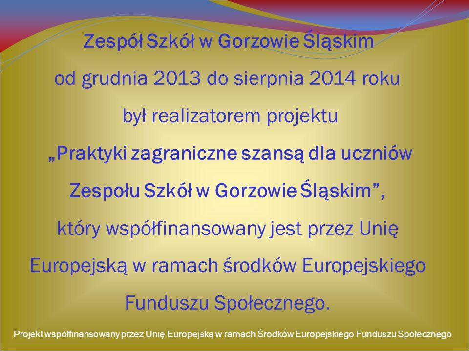 Kładzenie płytek Projekt współfinansowany przez Unię Europejską w ramach Środków Europejskiego Funduszu Społecznego