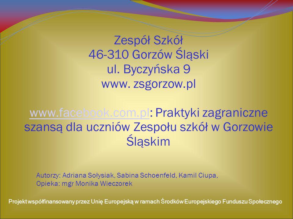 Autorzy: Adriana Sołysiak, Sabina Schoenfeld, Kamil Ciupa, Opieka: mgr Monika Wieczorek Zespół Szkół 46-310 Gorzów Śląski ul.