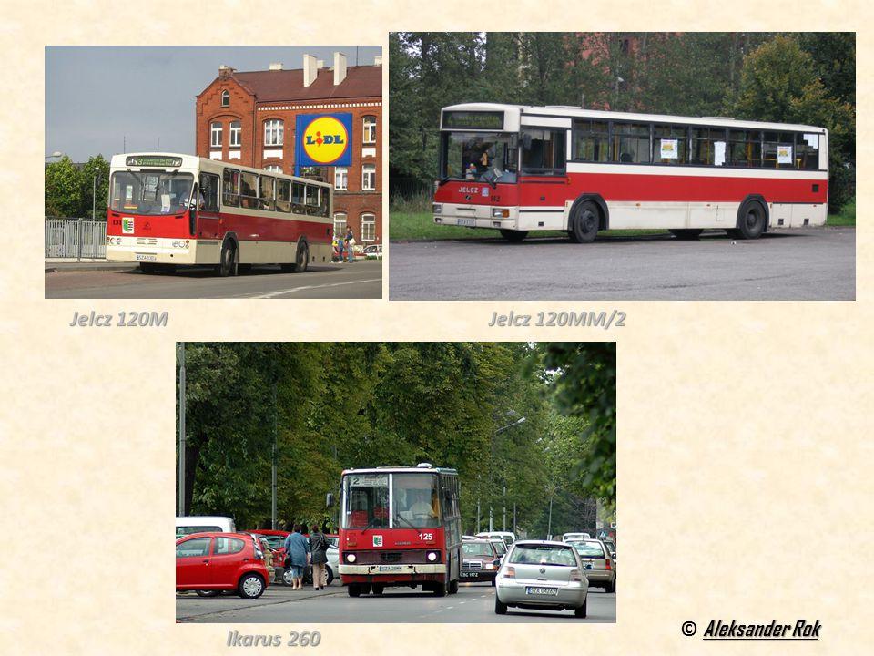 Aleksander Rok © Aleksander Rok Jelcz 120M Jelcz 120MM/2 Ikarus 260 Ikarus 260