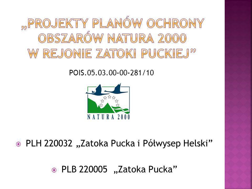 " PLH 220032 ""Zatoka Pucka i Półwysep Helski""  PLB 220005 ""Zatoka Pucka"" POIS.05.03.00-00-281/10"