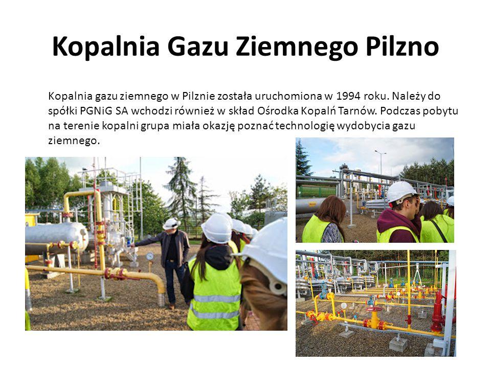 Kopalnia Gazu Ziemnego Pilzno Kopalnia gazu ziemnego w Pilznie została uruchomiona w 1994 roku. Należy do spółki PGNiG SA wchodzi również w skład Ośro