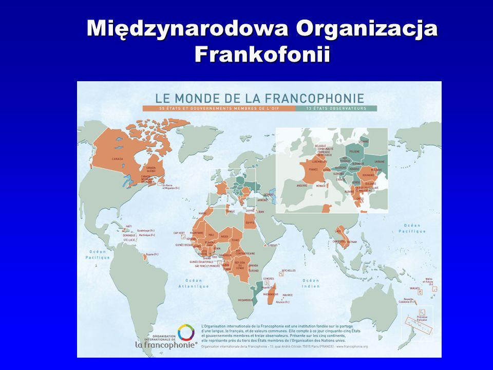 Instytut Romanistyki UW Francuski – język instytucji międzynarodowych  Język dyplomacji i wielu międzynarodowych dokumentów prawnych  Jeden z 6 oficjalnych języków ONZ  Jeden z języków roboczych instytucji Unii Europejskiej