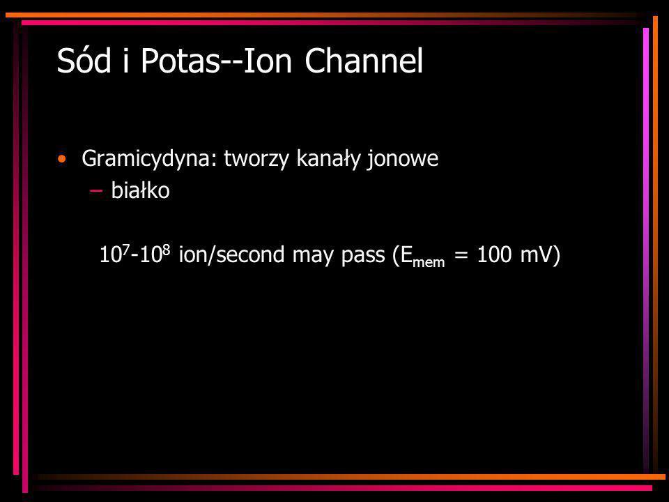 Sód i Potas--Ion Channel Gramicydyna: tworzy kanały jonowe –białko 10 7 -10 8 ion/second may pass (E mem = 100 mV)