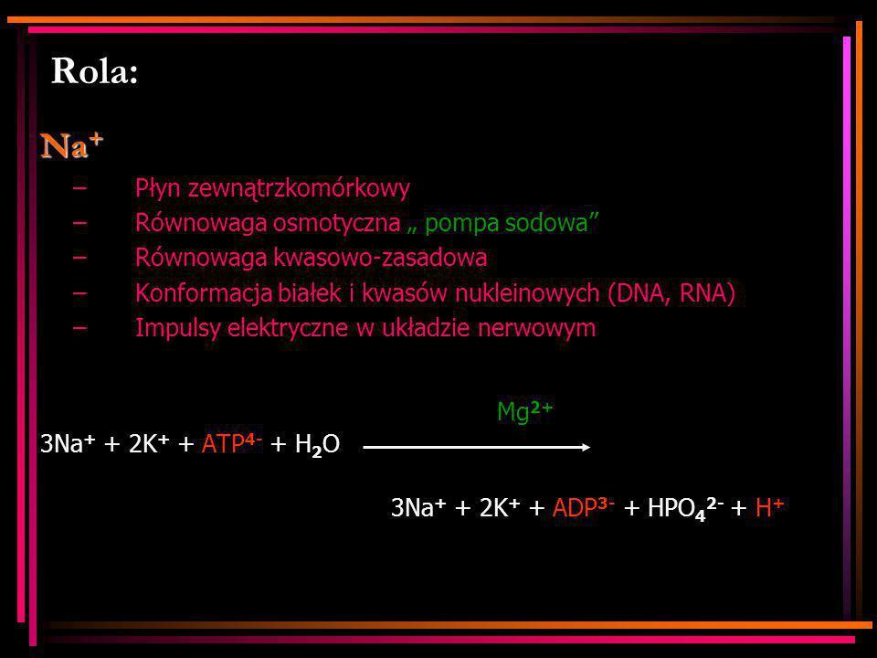 """Rola: Na + –Płyn zewnątrzkomórkowy –Równowaga osmotyczna """" pompa sodowa"""" –Równowaga kwasowo-zasadowa –Konformacja białek i kwasów nukleinowych (DNA, R"""