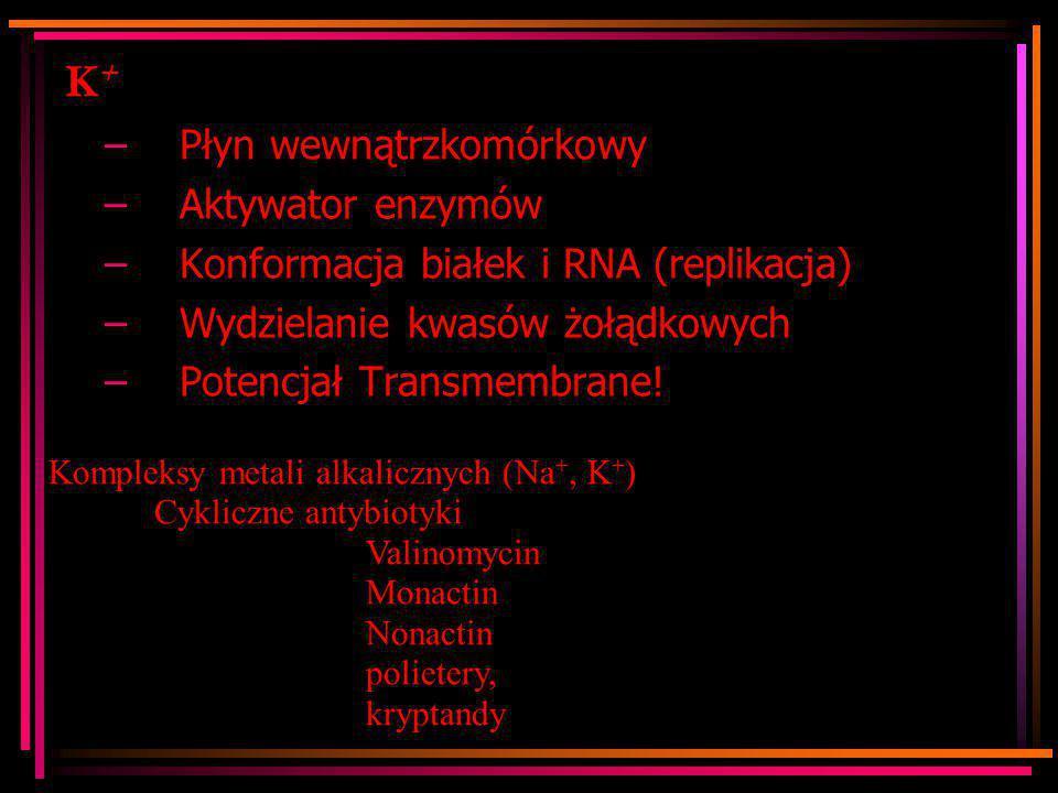K+K+ –Płyn wewnątrzkomórkowy –Aktywator enzymów –Konformacja białek i RNA (replikacja) –Wydzielanie kwasów żołądkowych –Potencjał Transmembrane! Kompl