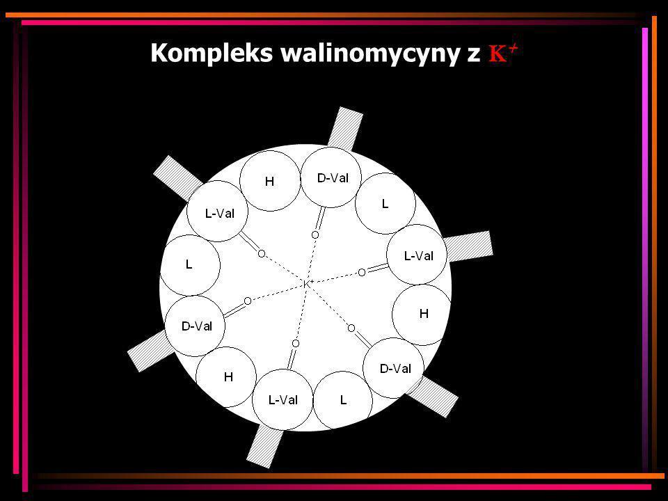 Kompleks walinomycyny z K +