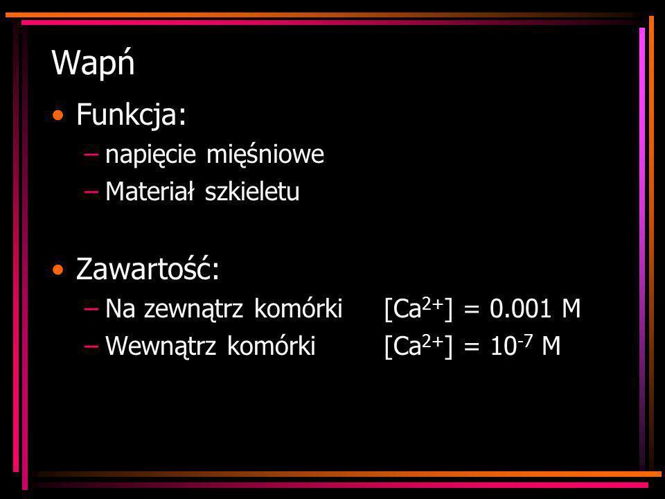 Wapń Funkcja: –napięcie mięśniowe –Materiał szkieletu Zawartość: –Na zewnątrz komórki[Ca 2+ ] = 0.001 M –Wewnątrz komórki [Ca 2+ ] = 10 -7 M
