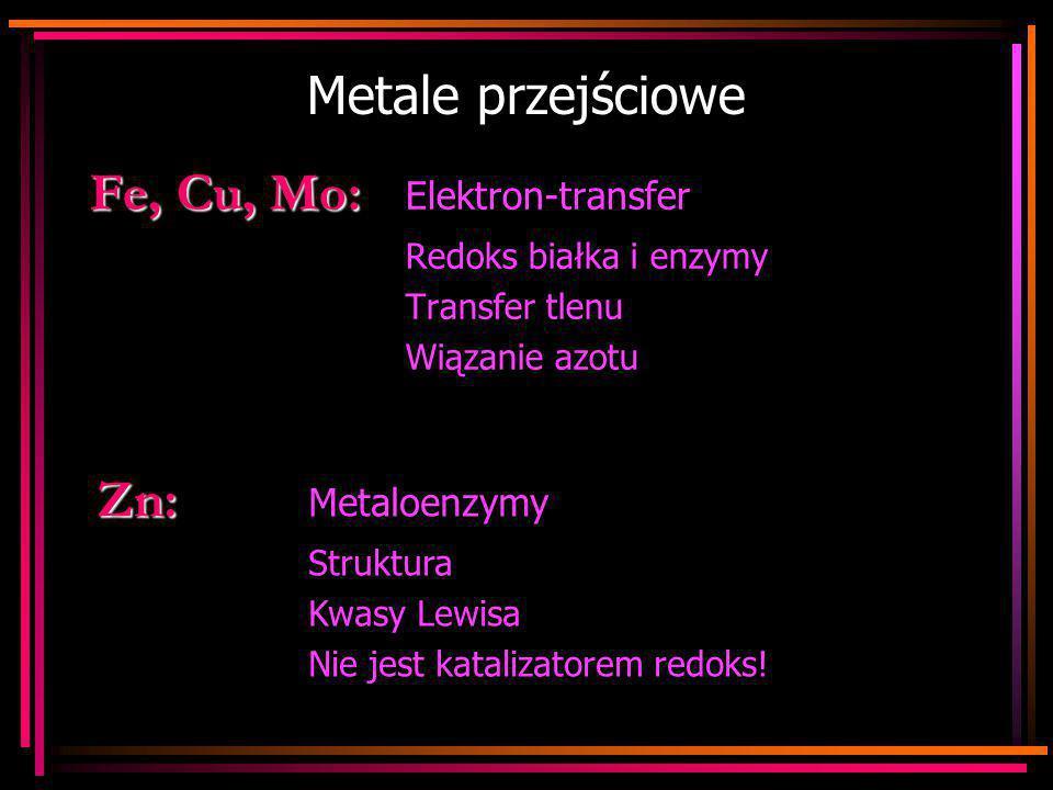 Metale przejściowe Fe, Cu, Mo: Fe, Cu, Mo: Elektron-transfer Redoks białka i enzymy Transfer tlenu Wiązanie azotu Zn: Zn: Metaloenzymy Struktura Kwasy