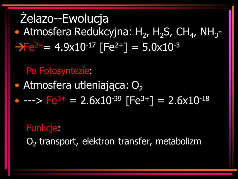 Żelazo--Ewolucja Atmosfera Redukcyjna: H 2, H 2 S, CH 4, NH 3 -  Fe 2+ = 4.9x10 -17 [Fe 2+ ] = 5.0x10 -3 Po Fotosyntezie: Atmosfera utleniająca: O 2
