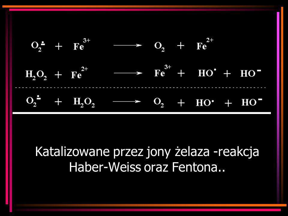 Katalizowane przez jony żelaza -reakcja Haber-Weiss oraz Fentona..