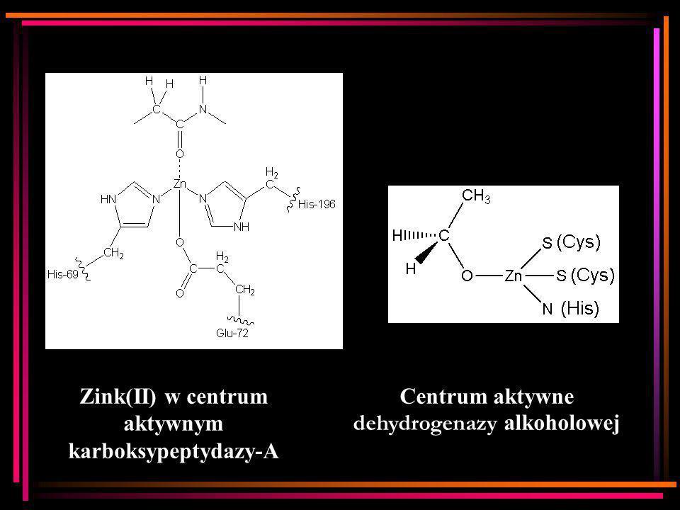 Zink(II) w centrum aktywnym karboksypeptydazy-A Centrum aktywne dehydrogenazy alkoholowej
