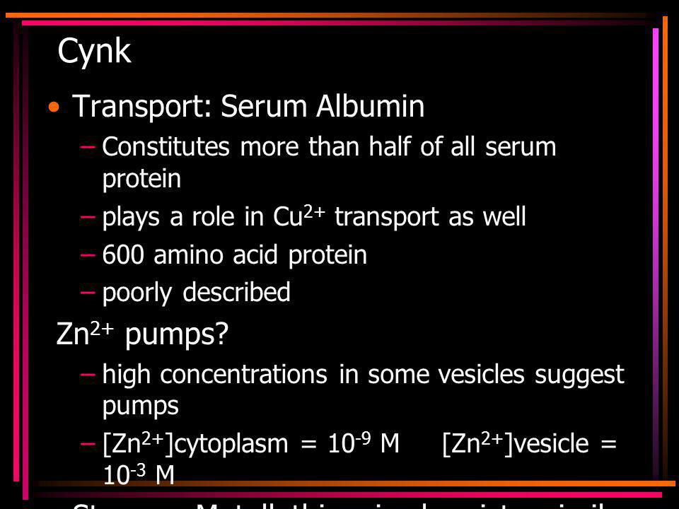 Cynk Transport: Serum Albumin –Constitutes more than half of all serum protein –plays a role in Cu 2+ transport as well –600 amino acid protein –poorly described Zn 2+ pumps.